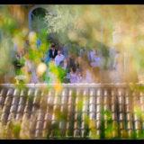 mariage ferme fortia drome-photo-lucie-marieuse-d-images505